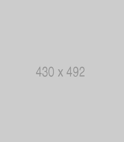 Pin 430x492