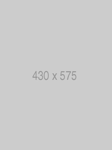 Pin 430x575